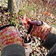 Wrist warmers fall colors