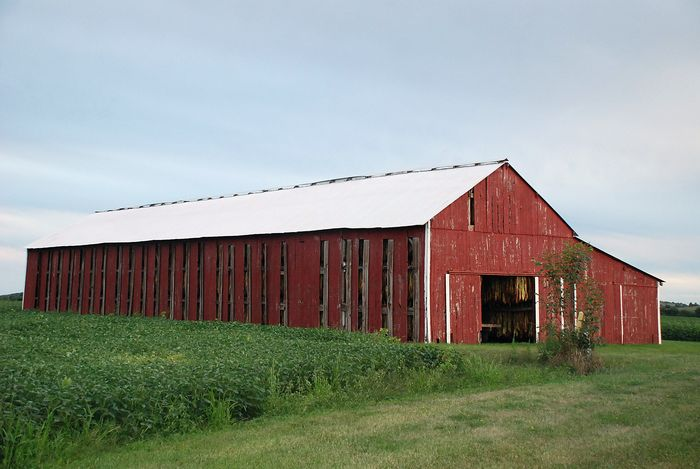 Tobacco barn vented