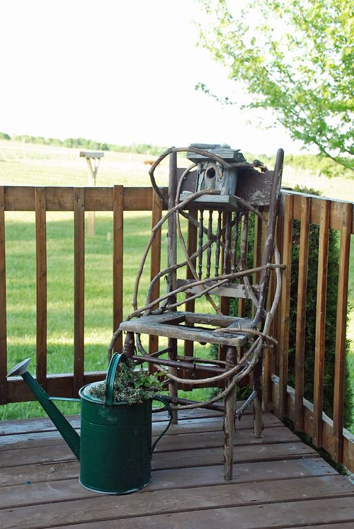 Vines and chair