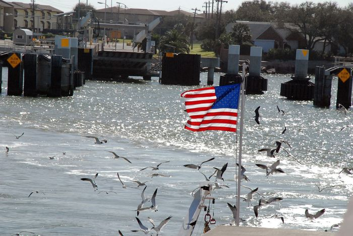 Flag and birds