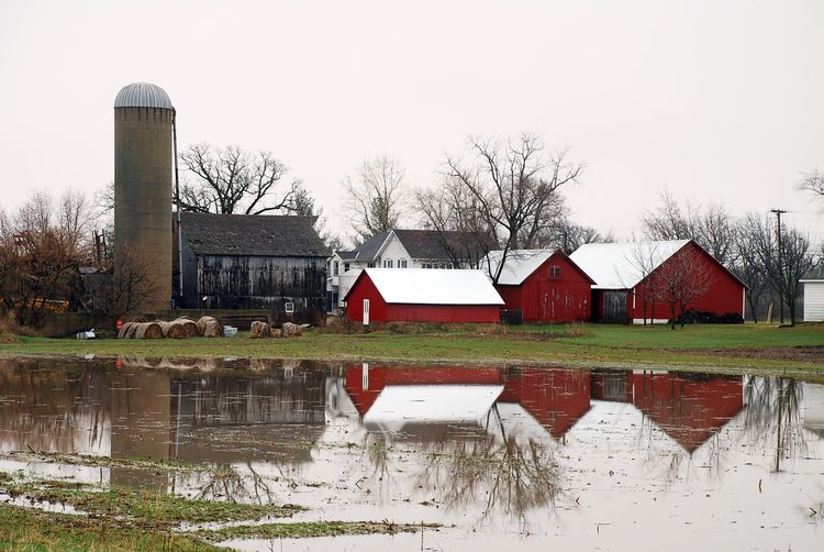 4-barn reflections