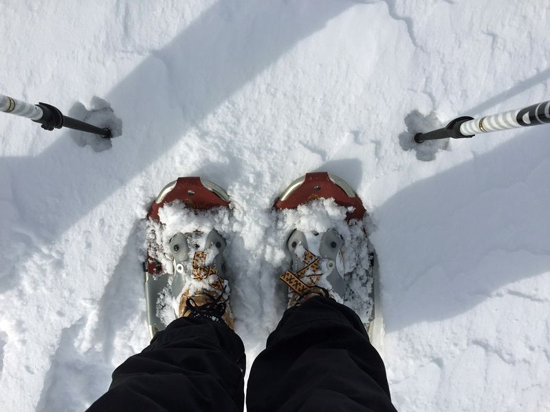 My snowshoes